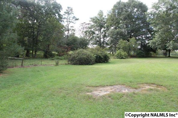 797 County Rd. 522, Fyffe, AL 35971 Photo 45