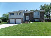 Home for sale: 315 Nottingham Ln., Highland, IL 62249