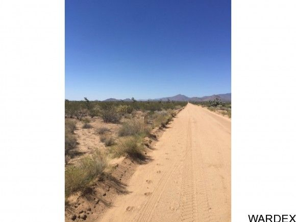71 Appaloosa Rd., Yucca, AZ 86438 Photo 3