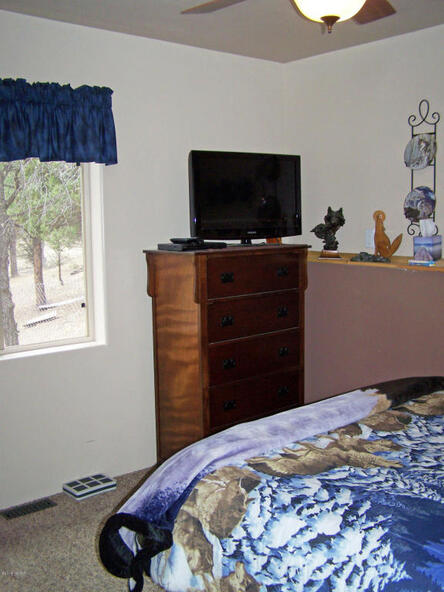 27 County Rd. 2026, Nutrioso, AZ 85932 Photo 25
