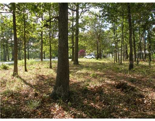 92 Holiday Island Dr., Holiday Island, AR 72631 Photo 11