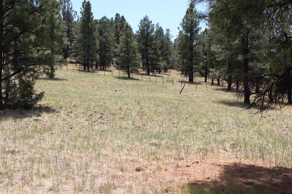 3252 N. Chickadee Trail, Flagstaff, AZ 86001 Photo 57