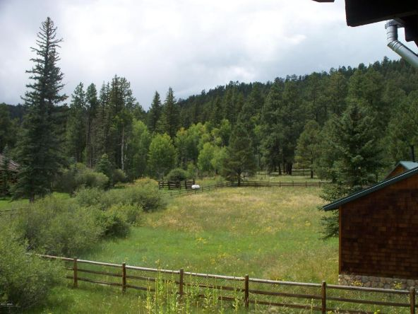 64 N. 1324cr, Greer, AZ 85927 Photo 7