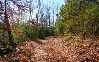 Home for sale: Shearer Ridge Lot #4, Hayesville, NC 28904