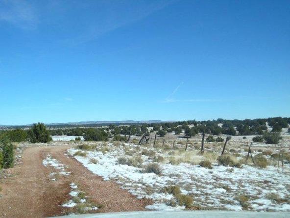 459 Hardrock Rd., Seligman, AZ 86337 Photo 44