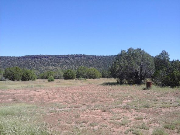 47683 N. Deadwood Rd., Seligman, AZ 86337 Photo 20