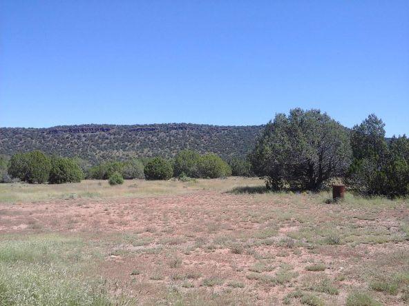 47683 N. Deadwood Rd., Seligman, AZ 86337 Photo 20