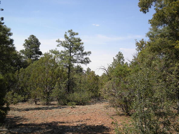 1853 Woolford Rd., Pinedale, AZ 85934 Photo 7