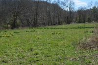Home for sale: Lot A 3.973 Acres, Shiloh Rd., Friendly, WV 26146