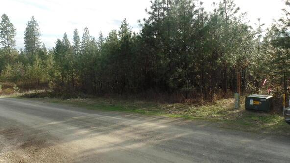 Lot 70 Sherman View Way, Kettle Falls, WA 99141 Photo 3