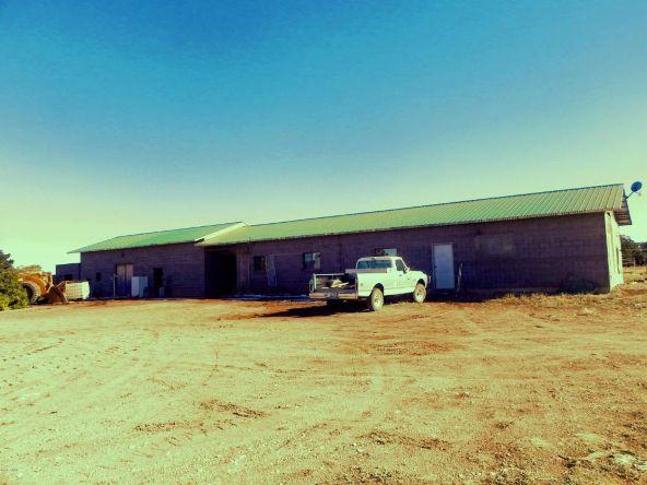 9877 Bluebell Ln., White Mountain Lake, AZ 85912 Photo 4