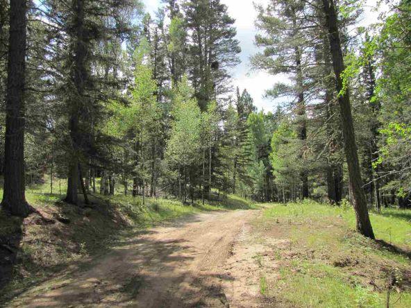 119 W. Pecos Canyon Estates Rd., Tererro, NM 87573 Photo 18