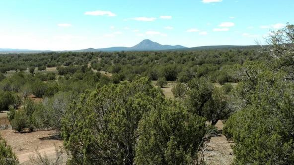 243 N. Juniperwood Ranch --, Ash Fork, AZ 86320 Photo 4