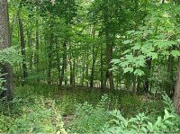 Home for sale: Lot 28 Maxfelix, Mansfield, CT 06268