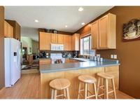 Home for sale: 324 Blue Heron Ln., Woodbury, MN 55125