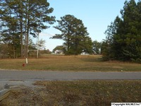 Home for sale: 0 Pilgrims Rest Rd., Southside, AL 35907