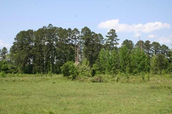 20 Round Mountain Rd., Conway, AR 72034 Photo 21