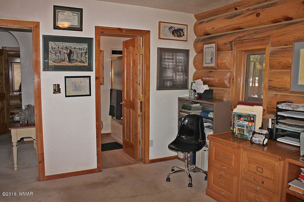 38721 State Route 373, Greer, AZ 85927 Photo 22