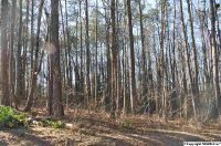 Home for sale: 0 Copeland Rd., Arab, AL 35016