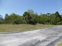 Home for sale: 13939 Lakeshore Blvd., Hudson, FL 34667