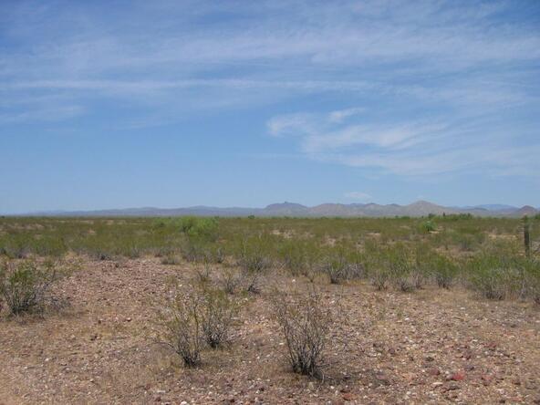 21900 W. Restin Rd., Wittmann, AZ 85361 Photo 5