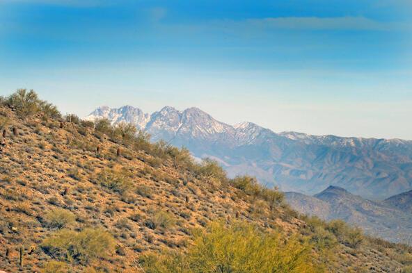 14340 E. Desert Tortoise Trail, Fountain Hills, AZ 85268 Photo 18