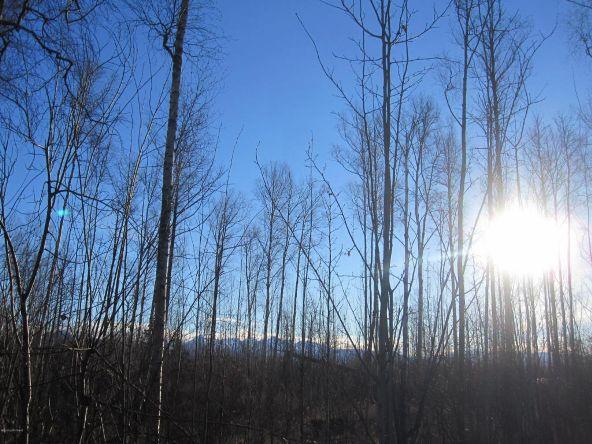 7695 S. Settlers Bay Dr., Wasilla, AK 99623 Photo 8