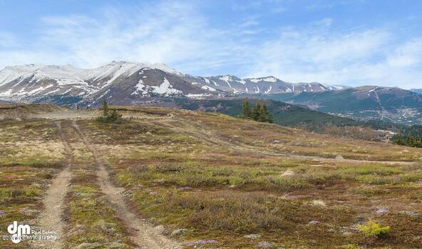 9820 Meadow Rd., Anchorage, AK 99516 Photo 3