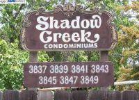 Home for sale: 3847 Vineyard, Pleasanton, CA 94566