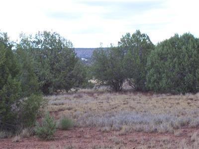 1805 W. Cumberland Parcel J Rd., Ash Fork, AZ 86320 Photo 9
