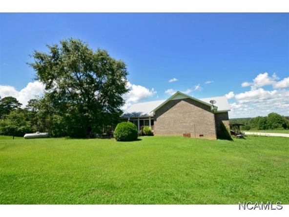132 Co Rd. 202, Crane Hill, AL 35053 Photo 19