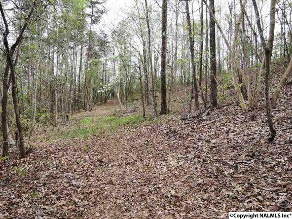 14 Bent Oak Cir., Arley, AL 35541 Photo 6