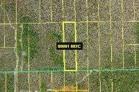 Home for sale: 14301 E. Terry St., Bonita Springs, FL 34135