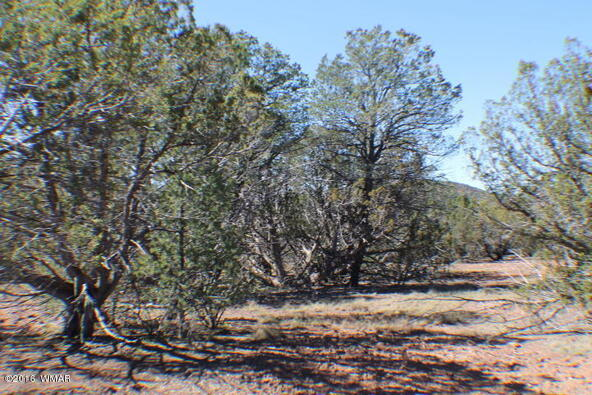 8 Acres Off Of Acr N. 3114, Vernon, AZ 85940 Photo 18