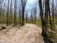 Home for sale: Lot 2 Mount View Rd., Mosinee, WI 54455