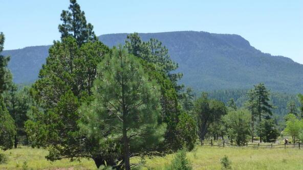 220 W. Zane Grey Cir., Christopher Creek, AZ 85541 Photo 26