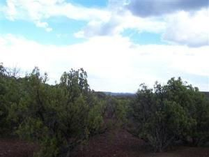 491 Westwood Ranch Lot 491, Seligman, AZ 86337 Photo 5
