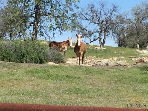 1163 Stockton Dr., Bakersfield, CA 93308 Photo 36