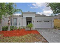 Home for sale: 20223 Still Wind Dr., Tampa, FL 33647