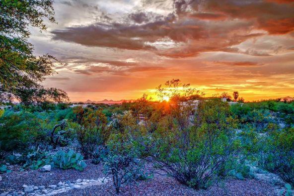 11447 E. Placita Rancho Grande, Tucson, AZ 85730 Photo 48