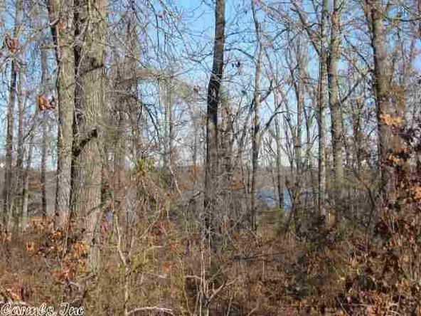 515 Tri Lakes Dr., Horseshoe Bend, AR 72512 Photo 1