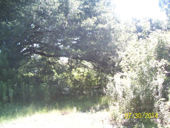 37750 Hwy. 225, Bay Minette, AL 36507 Photo 1