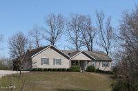 Home for sale: 22 Louis Wides Dr., Murphysboro, IL 62966