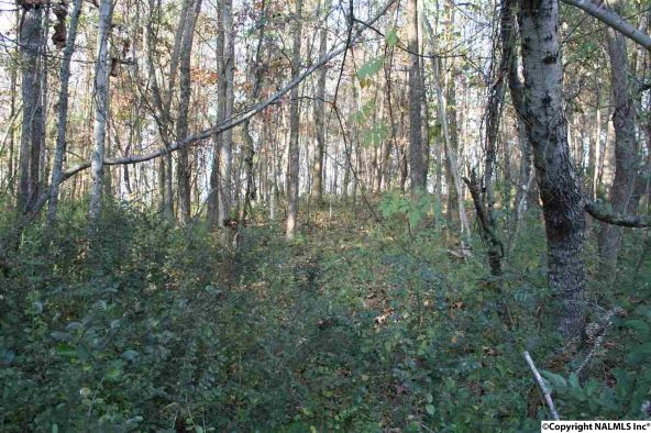 6.35 Acres Hwy. 72, Athens, AL 35611 Photo 10