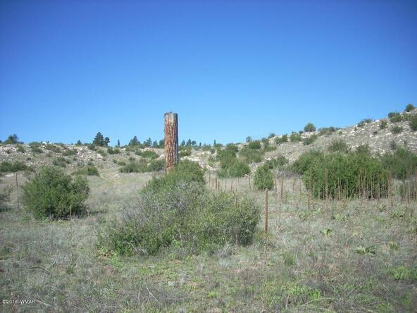 2952 Buckskin Canyon Rd., Heber, AZ 85928 Photo 7
