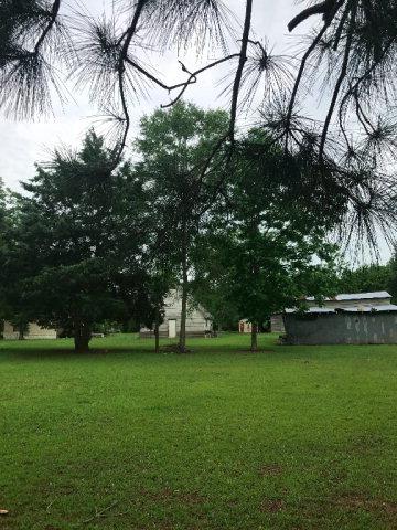 1158 Mccoy, Cottonwood, AL 36320 Photo 2
