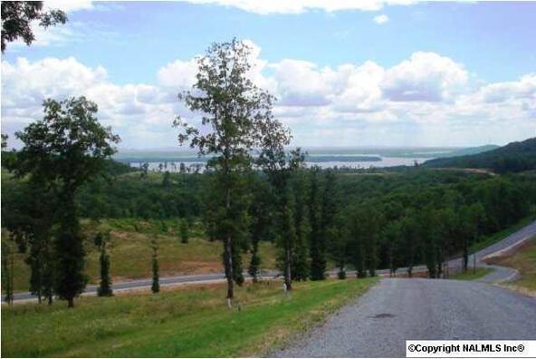 217 River Ridge Dr., Cedar Bluff, AL 35959 Photo 12