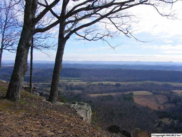 9416 County Rd. 103, Mentone, AL 35984 Photo 19