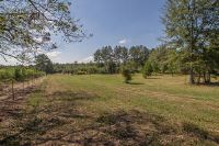 Home for sale: 000 Phillips Rd., Sumrall, MS 39482