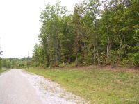 Home for sale: Lot 291 Veterans Loop, Wilder, TN 38589